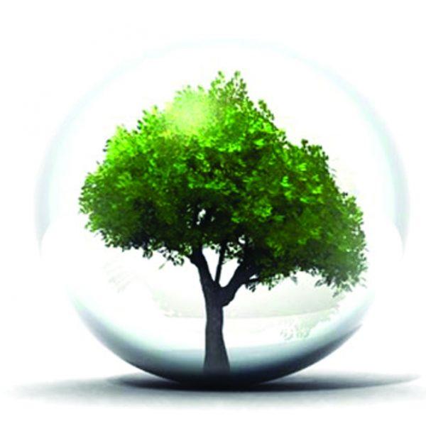 Notre engagement développement durable